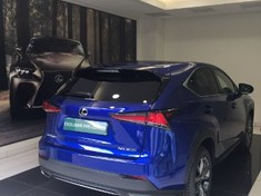 2019 Lexus NX 2.0 T F-Sport Gauteng Centurion_4