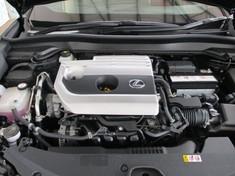 2019 Lexus UX 200 F-Sport Mpumalanga Middelburg_1