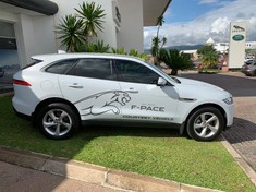 2019 Jaguar F-Pace 2.0 i4D AWD Pure Mpumalanga Nelspruit_2