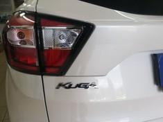 2019 Ford Kuga 1.5 TDCi Trend Kwazulu Natal Pietermaritzburg_1