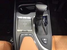 2019 Lexus UX 250h SE Gauteng Centurion_1