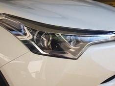 2019 Toyota C-HR 1.2T Plus CVT Mpumalanga