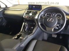 2019 Lexus NX 2.0 T EX Mpumalanga Witbank_3