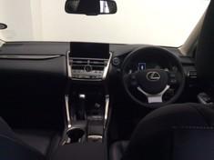2017 Lexus NX 2.0 T EX Gauteng Centurion_1