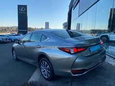 2020 Lexus ES 250 EX Gauteng Rosettenville_2