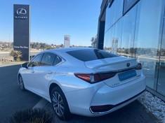 2020 Lexus ES 300h EX Gauteng Rosettenville_2