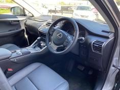 2020 Lexus NX 300 EX Gauteng Rosettenville_3