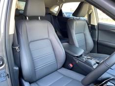2020 Lexus NX 300 EX Gauteng Rosettenville_4