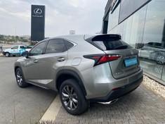 2018 Lexus NX 2.0 T F-Sport Gauteng Rosettenville_2