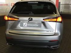 2020 Lexus NX 300 EX Mpumalanga Witbank_3