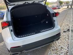 2020 Lexus NX 300 F-Sport Gauteng Rosettenville_3