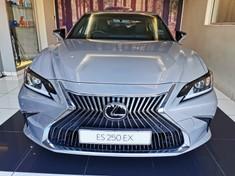 2021 Lexus ES 21P Lexus ES 250 EX Gauteng Midrand_1