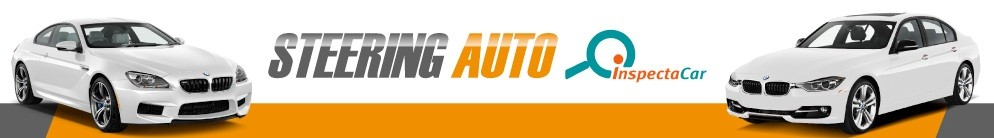 Steering Auto Inspectacar