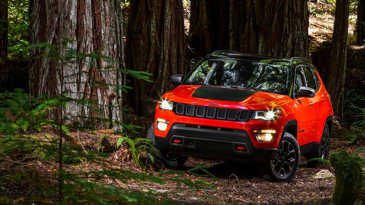 2017 Jeep Compasswild
