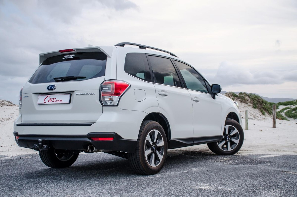 Forester in the Market