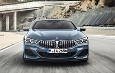 BMW 850 5
