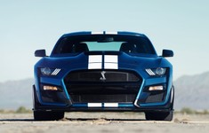 Mustang Shelby 8