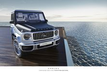 Carlex Design Mercedes AMG G63 2