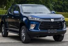 Qingling Taga Daka H 2021 Professional Pickup 4x4 3 920x425