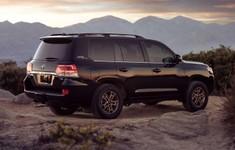 2021 Toyota Land Cruiser Rear Side