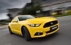 Mustang 0006 1800x1800