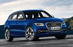 Audi SQ5 TDI 2013 1024x768 Wallpaper 06
