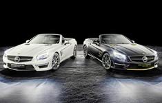 Mercedes Benz SL63 AMG World Championship 2014 Collectors Edition