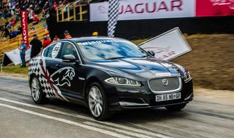 Jaguar XF Ash