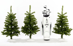 Bmw Golfcartbag