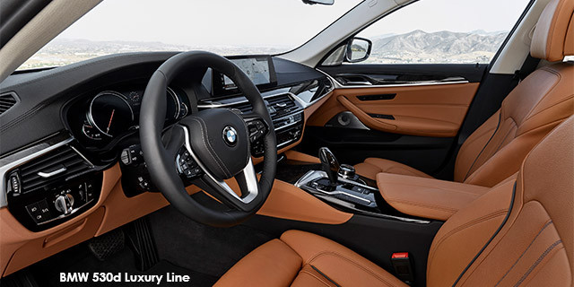 BMW 5 Series 530d Luxury Line_3