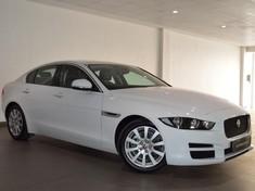 2016 Jaguar XE 2.0D Pure Free State Bloemfontein